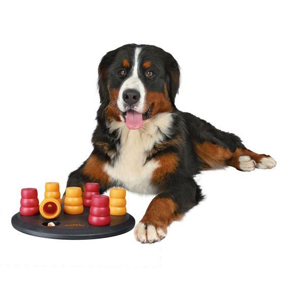 Dog Activity Solitär Strategiespiel